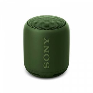 Portable speaker Sony SRS-XB10G