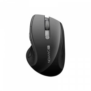 Mouse Canyon CNS-CMSW01B