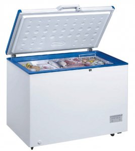 Freezer Crown CHF-316 E