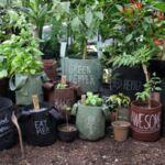 """Комбо Сет от Кафяви Текстилни """"Root Builder"""" Контейнери за растения-Copy"""
