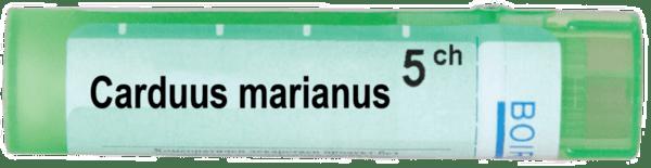 Carduus marianus Boiron (Кардус марианус Боарон)