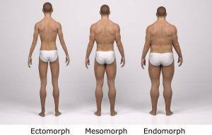 Какъв трябва да е приемът на макроелементи спрямо типа тяло?