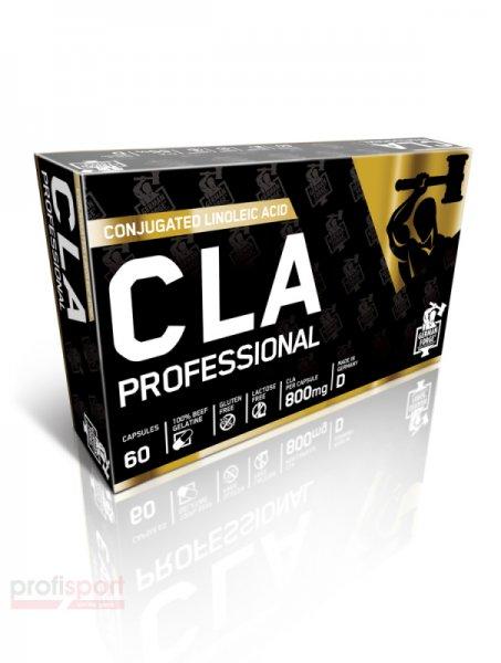 CLA PROFESSIONAL