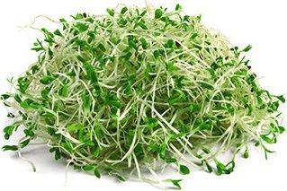 Кълнове от броколи 50 г