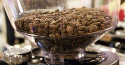 """Какво разбираме под """"прясно кафе""""?"""